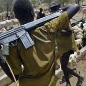 Suspected Fulani Herdsmen Strike Heavily Again In Osun, See What They Did That Got People Talking