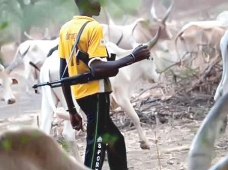 Funlani Herdsmen: Parents Of Deceased Herder In Plateau Seeks Justice.