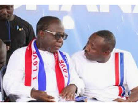 Stop Imposing Candidates On The Constituents, Renowned NPP Member To Party's NEC