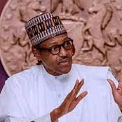 We Have The Capability To Defeat Bandits, But We Fear That Villagers Might Lose Their Lives- Buhari