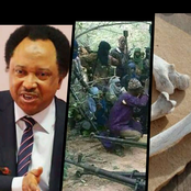 See the terrible thing Sen. Shehu said bandits do with dead bodies(corpses) that's got reactions