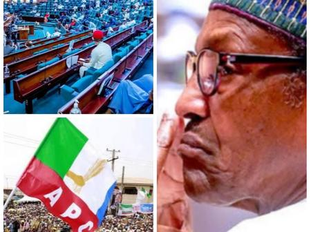 Today's Headlines: Nigerians In London occupy Buhari Home, Imo Attack Was Against Buhari And APC - Uzodinma