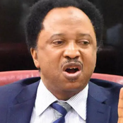 Reactions As Shehu Sani Reveals What Bandits Do When They Are Invited For Negotiations
