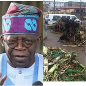 Today's Headlines: Rainstorm Destroys Houses, Schools In Ondo, Kwara, Abstain Worldly Things, Tinubu Tells Muslim
