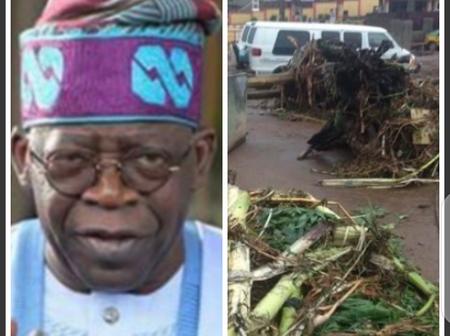 Today's Headlines: Rainstorm Destroys Houses, Schools In Ondo, Kwara, Abstain Worldly Things, Tinubu Tells Muslim