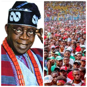 Bola Tinubu: See What He Did For Northern Residents That Has Led To Various Reactions On Twitter