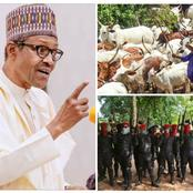 Opinion: Herdsmen Should Return To The East And Buhari Should Arrest These 2 People To Ensure Peace