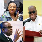 Reject These Two Akufo Addo's Ministerial Appointees- Citi FM Journalist Tells Parliament