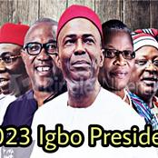 Igbo Presidency: Are These The Best 10 Ndigbo Can Put Forward In 2023? (Photos)