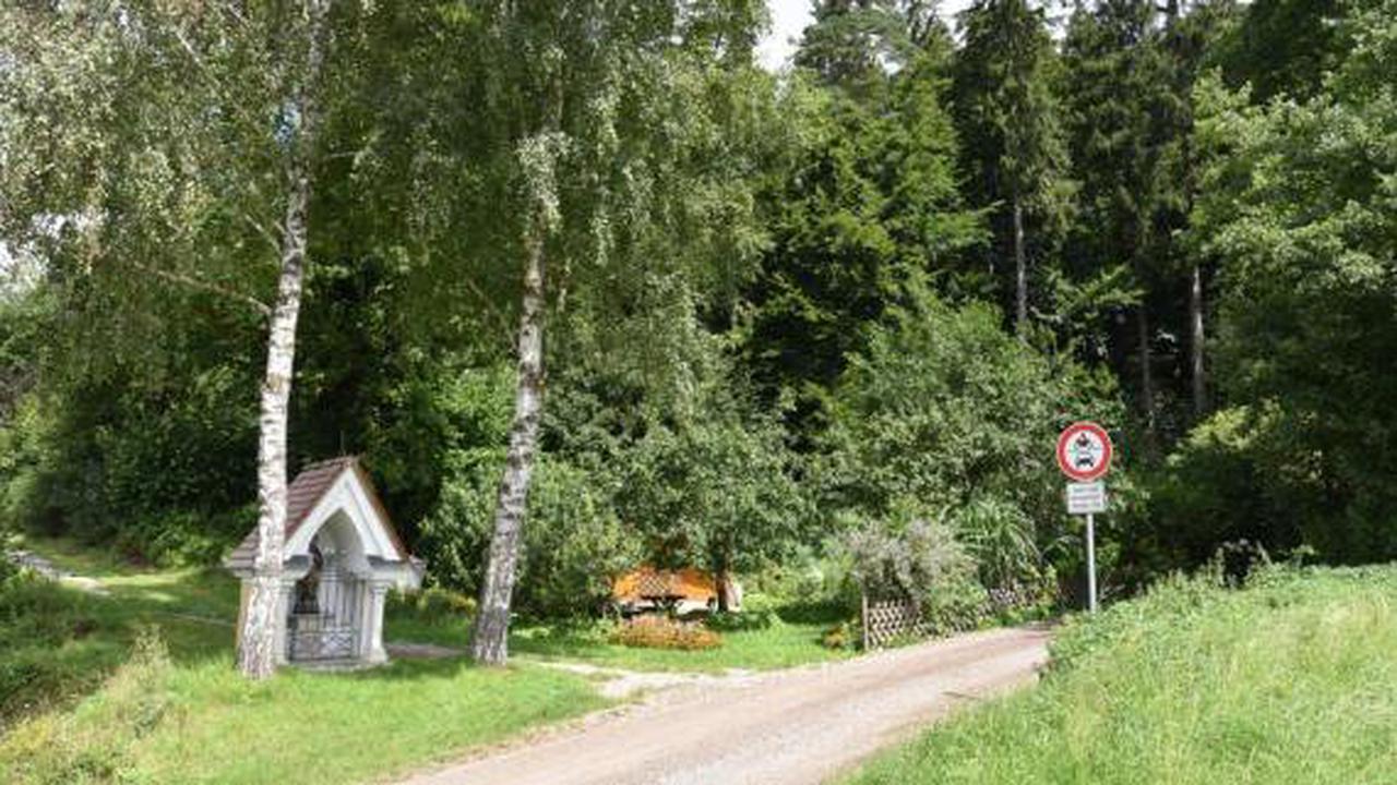 Bekommt Kellmünz einen Bestattungswald?