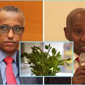 Somalia Minister Resigns Day After Being Moved From Lucrative Ministry That Deals With Miraa