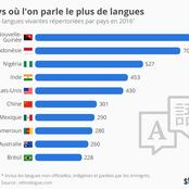 Le top dix des Pays où on parle le plus de langues
