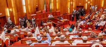 Breakdown Of What A Nigerian Senator Earns