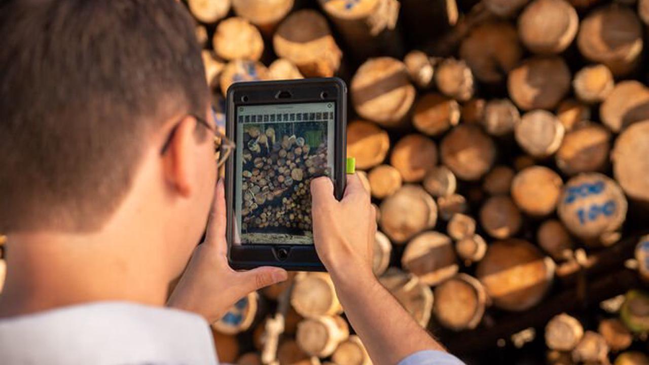 Wie Stihl die Forstwirtschaft digitalisiert