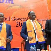 Raila's ODM to Suffer a Huge Loss After Disclosed Details of What a Nyanza Senator is Planning