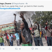 Foreigners Must leave SA trends online now South Africans are accused of being Xenophobic