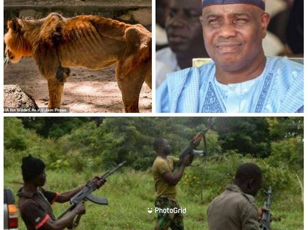 Today's Headlines: Hunger Kills Lion In A Nigerian Zoo, We Would Not Stop Attacking Until Govt Pays Us Monthly -Bandits