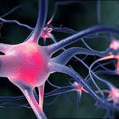 Nerve Damage Signs That You Should Never Ignore