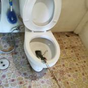 Check Out What This Man Saw In His Washroom [Pictures Of It]