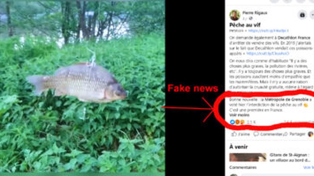 Non, la pêche au vif à Paris ou à Grenoble n'est pas interdite