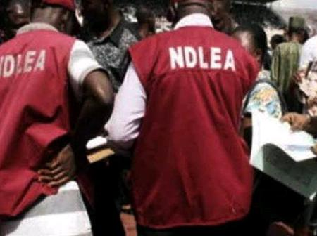 NDLEA Has Arrested A Man Who Concealed Drugs In Tea Tins At Abuja Airport