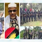 Opinion: The Fulani Herdsman Open Letter To Nnamdi Kanu Show Many People Still Wants Peace In Nigeria