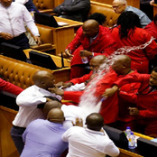 EFF is not perfect after all as these leaders are found Guilty of contempt of parliament