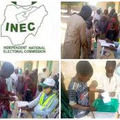How INEC replied lady who shared pictures of children voting in LGA election in Kano State