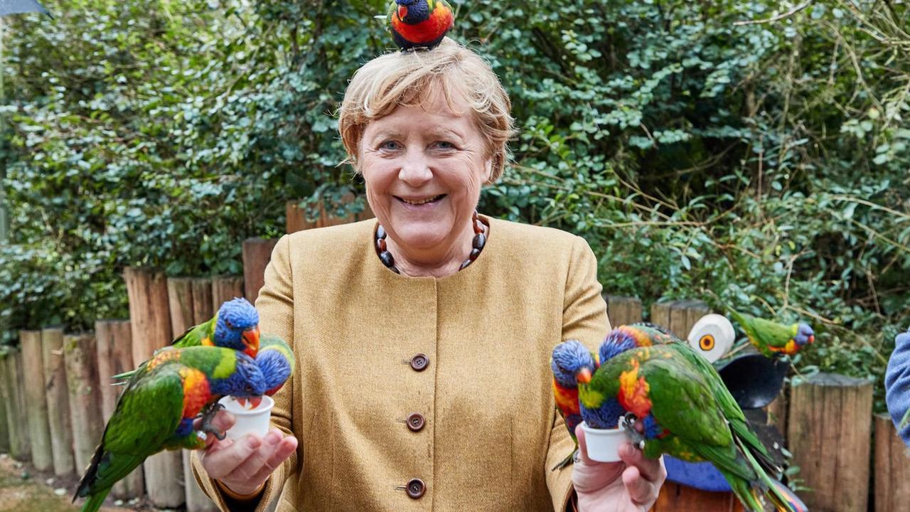 Kein Photoshop: Angela Merkel besucht Vogelpark – und produziert grandiose Fotos