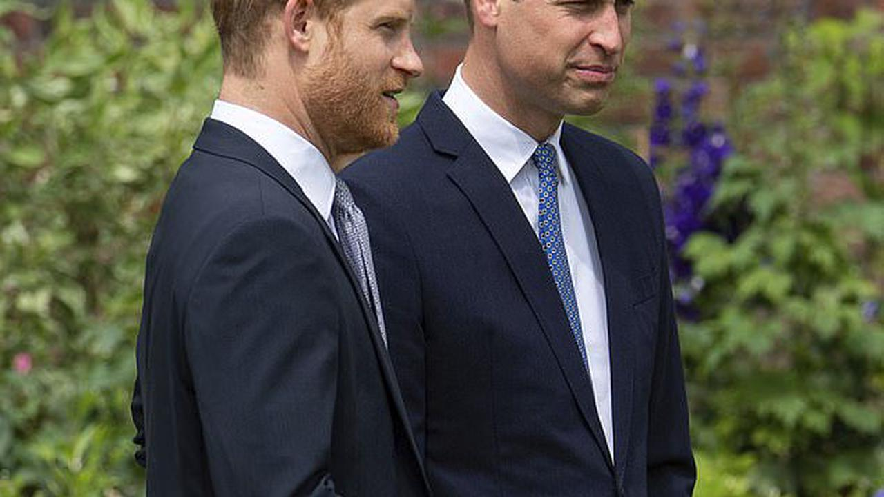 EDEN CONFIDENTIAL: Will Diana Award heal the toxic rift between warring Princes William and Harry when the brothers are reunited at a prize-giving ceremony in December?