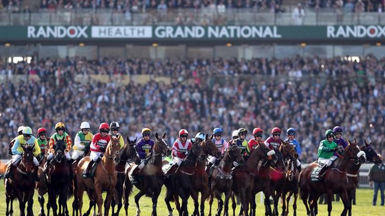 Download your free Grand National sweepstake kit right here