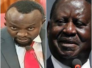 Lawyer Who Stole the Show During Anne Waiguru's Impeachment Defends Raila Odinga, Supports BBI