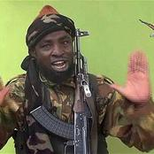 See What Abubakar Shekau Says About The Farm That Army Discovered In Sambisa Forest