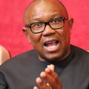 Allow Some Region-like State Security System To Function, Peter Obi Urges Federal Government