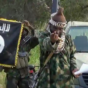 Boko Haram kills 3 Soldiers in Maiduguri Shootout