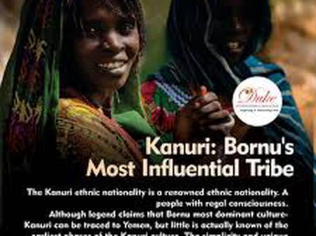 Kanuri People And Their Beautiful lifestyle