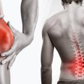 Rundown Of Food Sources That May Help Lessen Knee And Back pain