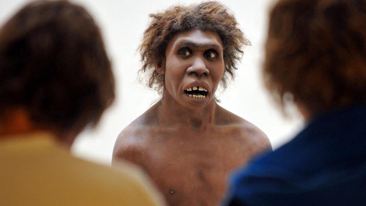 Neanderthals could hear and produce speech like humans, scientist say