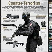 Weapons And Equipments Of Singapore's Special Operations Task Force