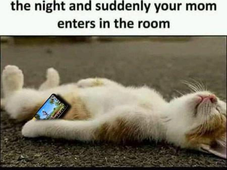 Entertain Yourself With These Funny Images