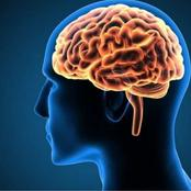 Natural ways to improve your brain power function and food.