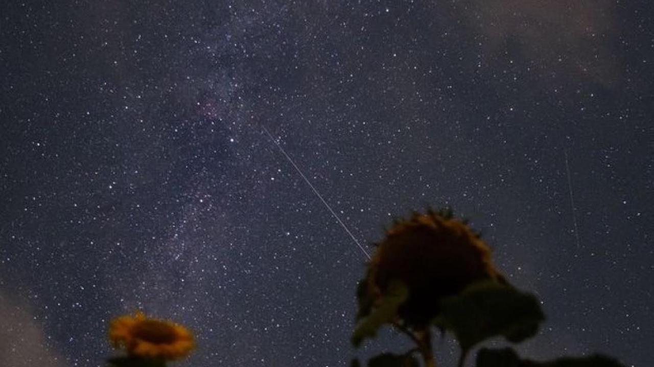 Sternen-Spektakel : Feuerwerk kosmischer Teile - Perseiden verglühen am Himmel