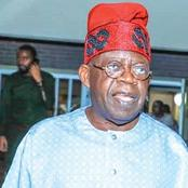 Opinion: If APC Denies Tinubu 2023 Ticket, This Is What He Should Do