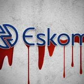 Here's Why Fully Privatizing Eskom Will Be Bad News For South Africa...>{Opinion}<
