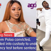 Leave This Poor Girl Alone - Kwame A-plus Reacts Angrily As Akuapem Poloo Gets Remanded In Custody