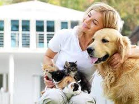 Health Benefits And Risks Of Pet Ownership