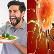 Foods to Help Men Recover Sperm Health, Count, and Motility