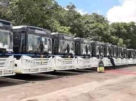 'Other countries are busy with the vaccine while Zimbabwe is buying buses' - OPINION