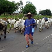 Fulani Herdsmen allegedly kill a girl in Ogun