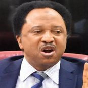Senator Shehu Sani Blasts Those Supporting Terrorists In Nigeria, Read What He Said